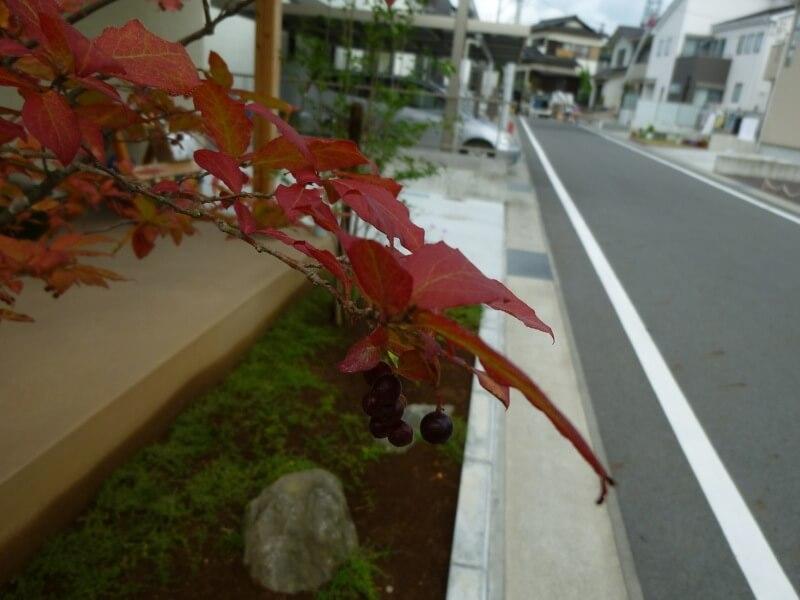 富士市 S様邸13